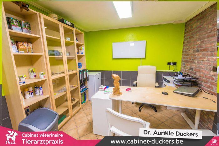 Cabinet vétérinaire - immobilier